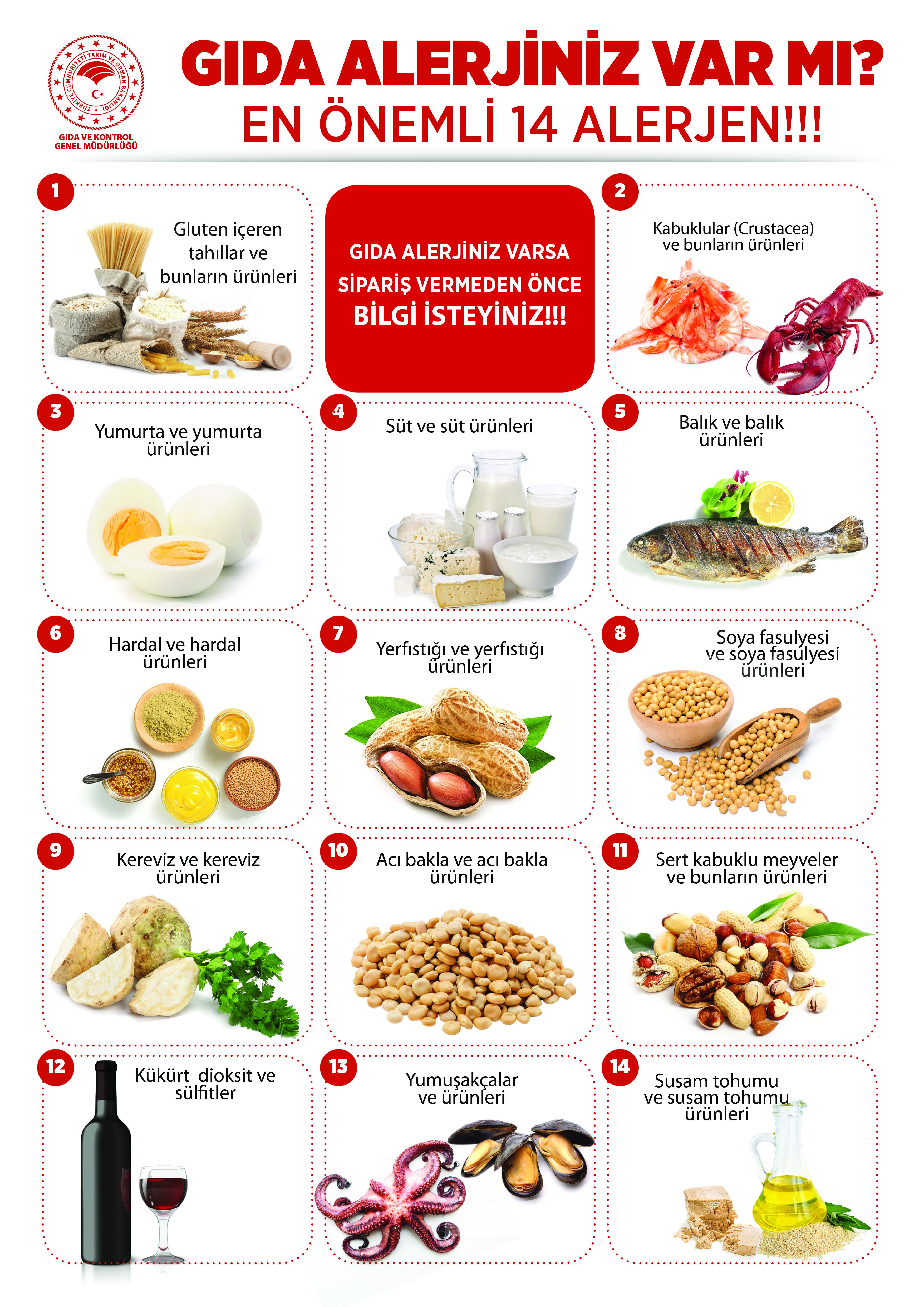 Gıda Alerjenleri.jpg