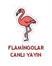 İzmir Kuş Cenneti Canlı